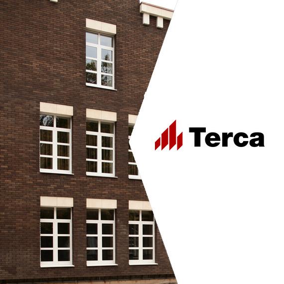 Керамический кирпич Terca