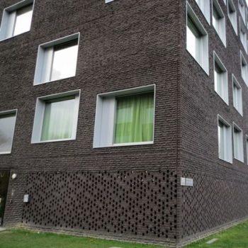 Кирпич ручной формовки Rijswaard