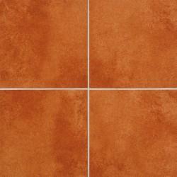 Ступени напольная плитка Euramic 524-male