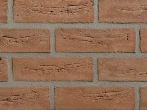 Клинкерная плитка Rijswaard Rood